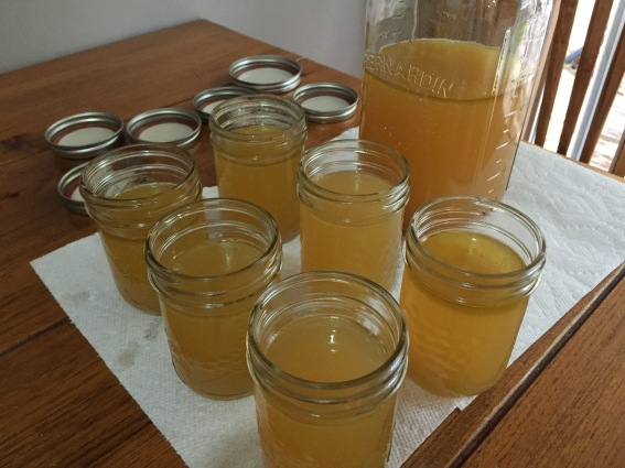 Chicken broth is lighter in colour naturally